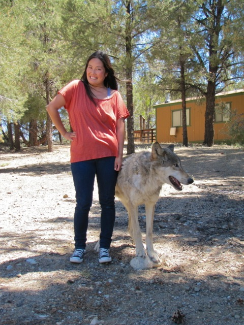 Me + Wolf