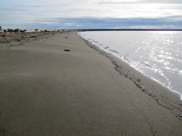 Iona Beach - 05