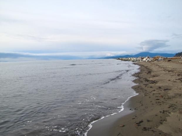 Iona Beach - 16