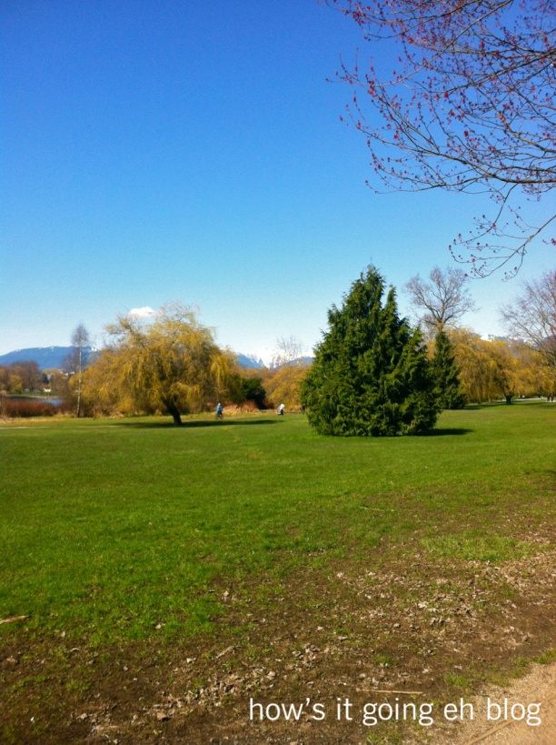 Sunny Vancouver - 1