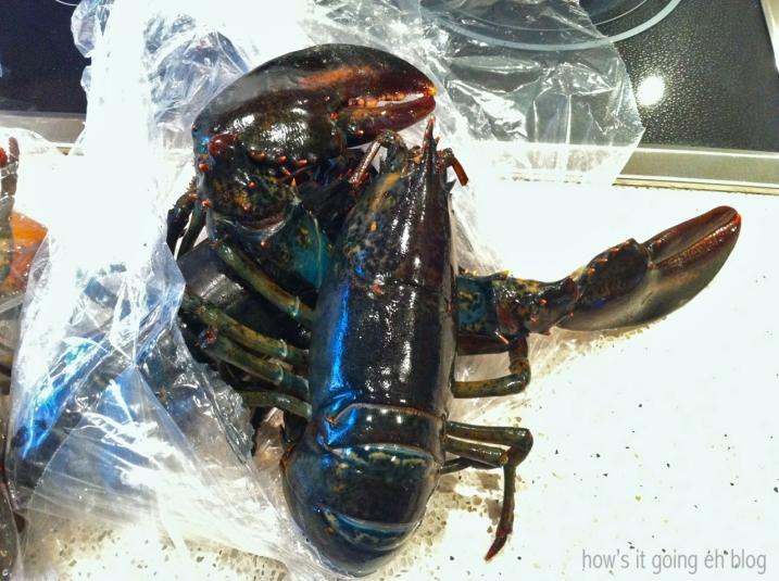 Dress Up Lobster Fest - 11