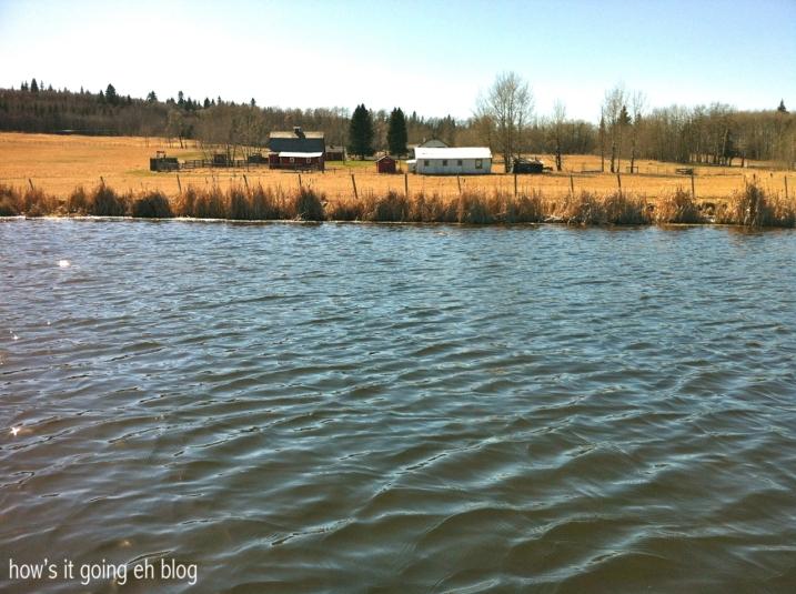 Our Lake - 13