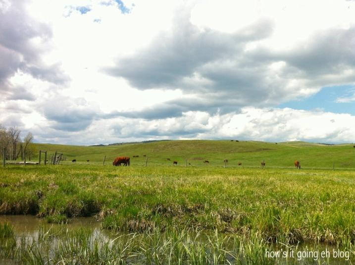 Prairie Paddlboarding - 05