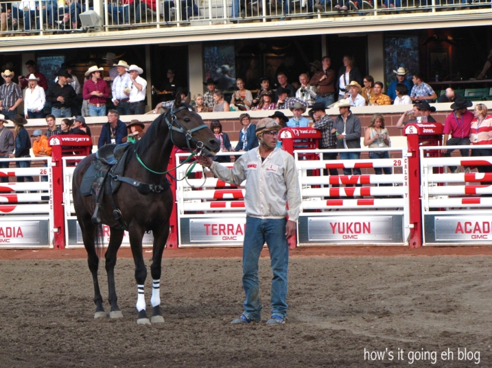 Calgary Stampede 2013 Day1 - 29