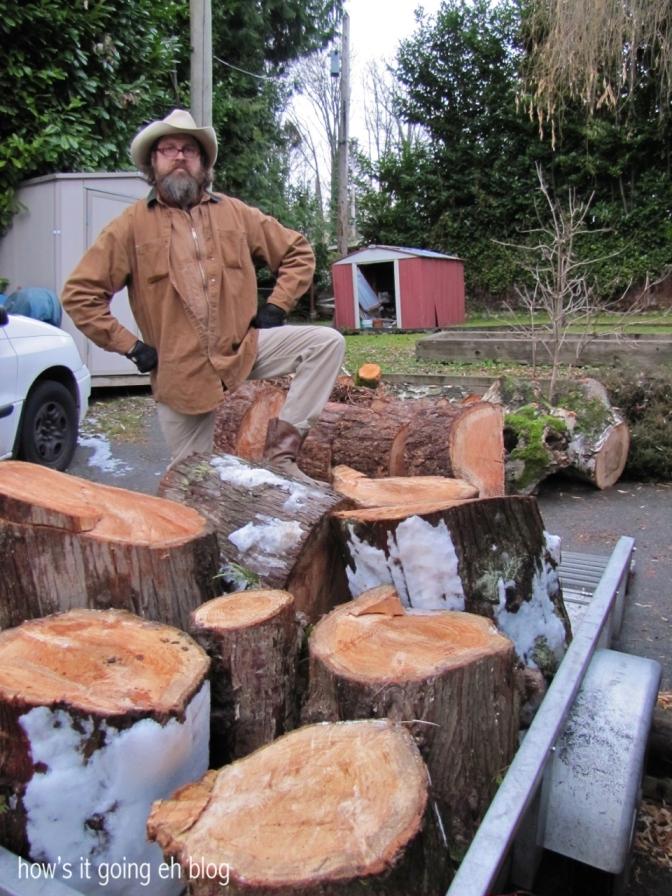 Firewood - 01
