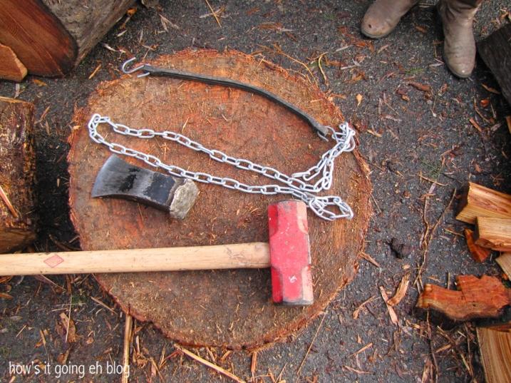 Firewood - 03