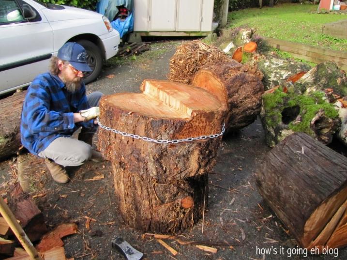 Firewood - 05