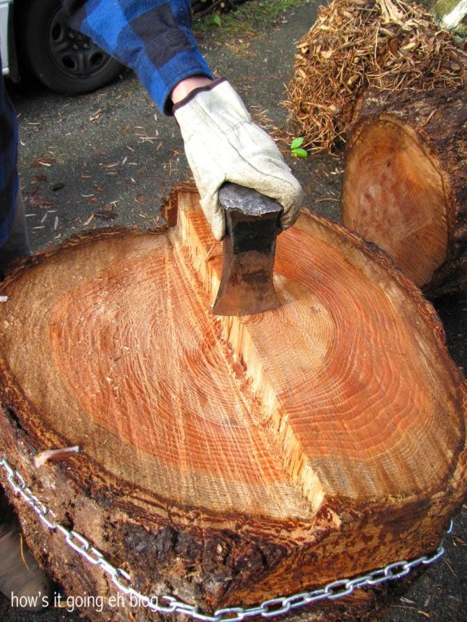 Firewood - 06