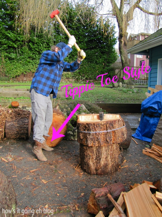 Firewood - 11