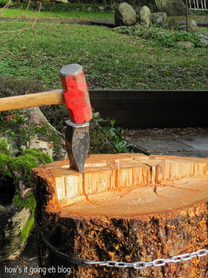 Firewood - 13