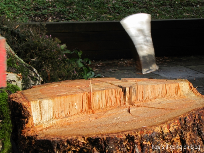 Firewood - 14