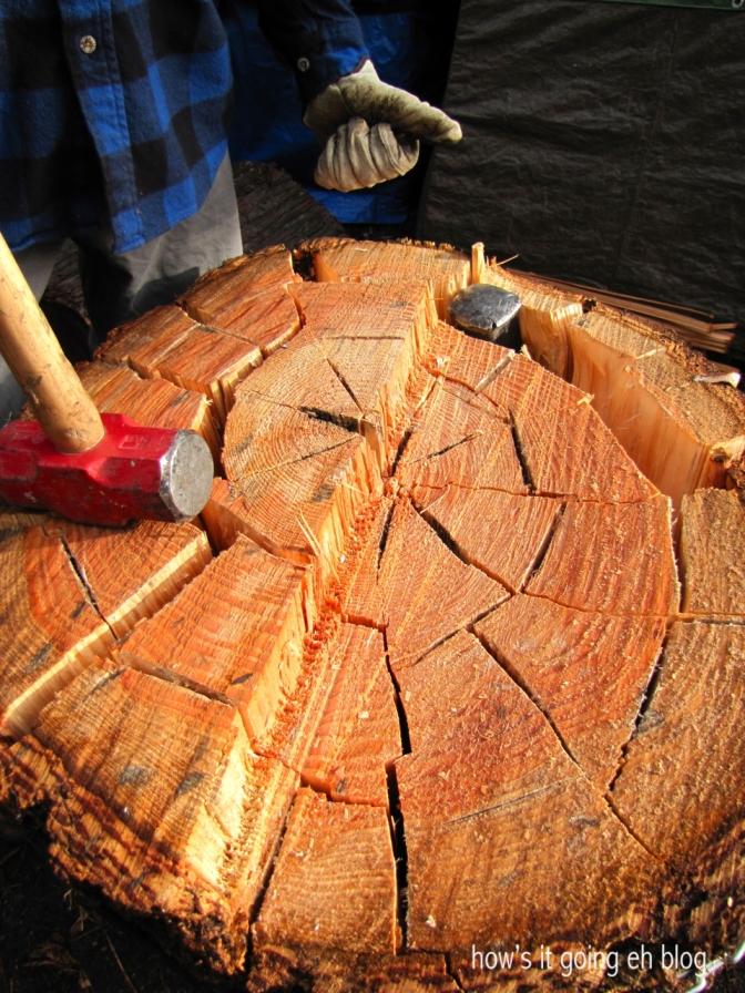 Firewood - 15