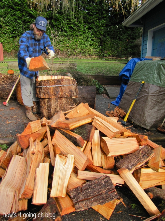 Firewood - 16